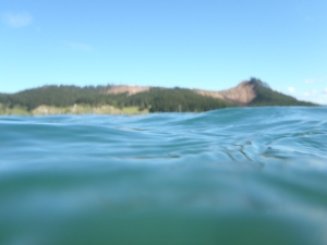 The swimmer's view of the estuary!